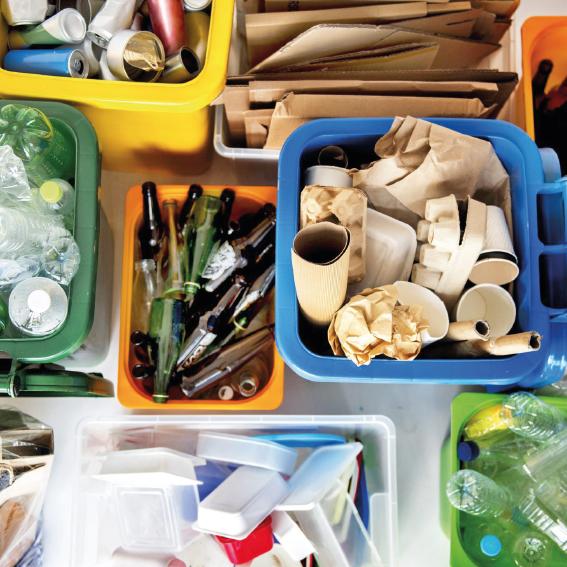 raccolta prodotti adessoverde verde green compostabile